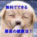 笑い,健康法,